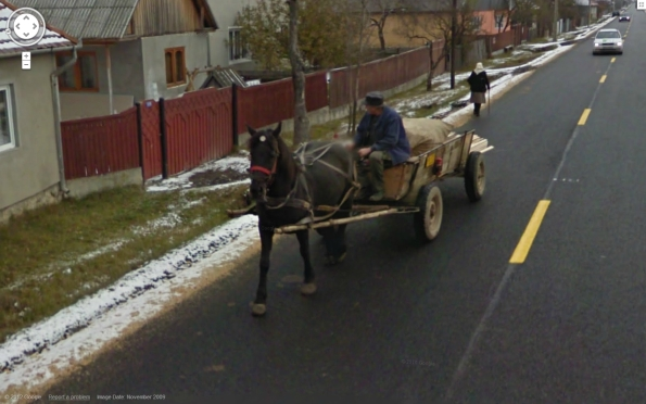 horse in romania3